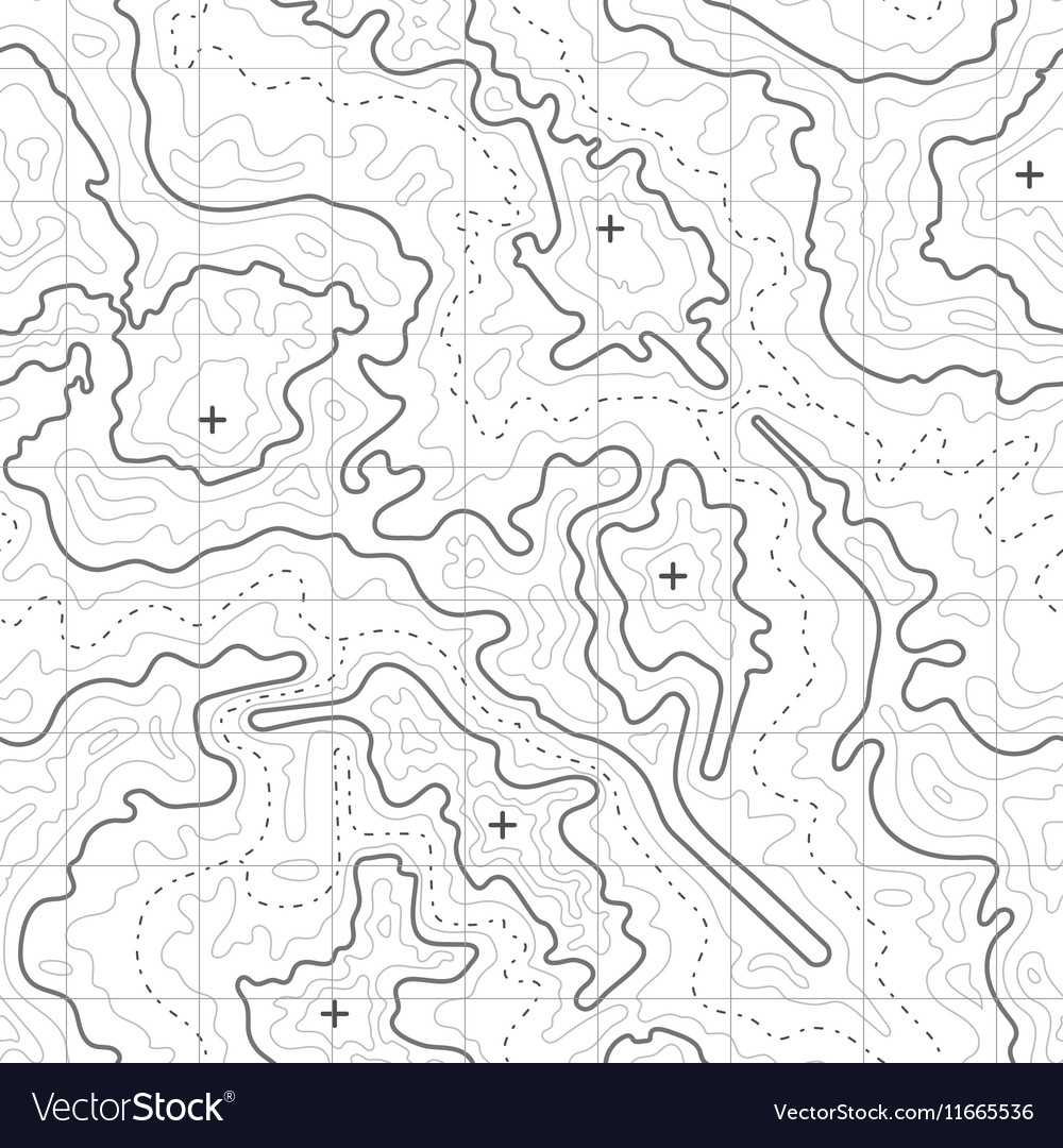 Topographic Map Vector Free.Topographic Map Background With Mountain Vector Image