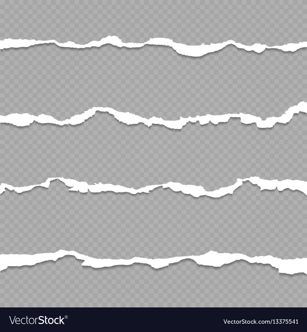 Ripped paper torn paper sheet edges isolated on vector image