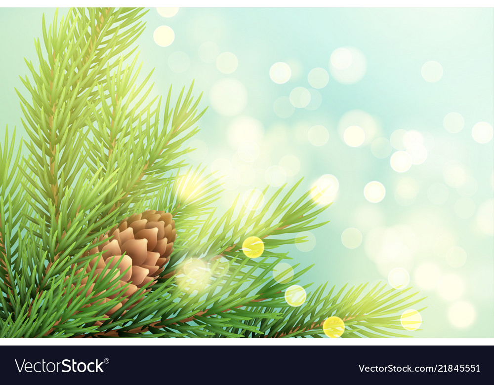 Realistic spruce branch with pinecone