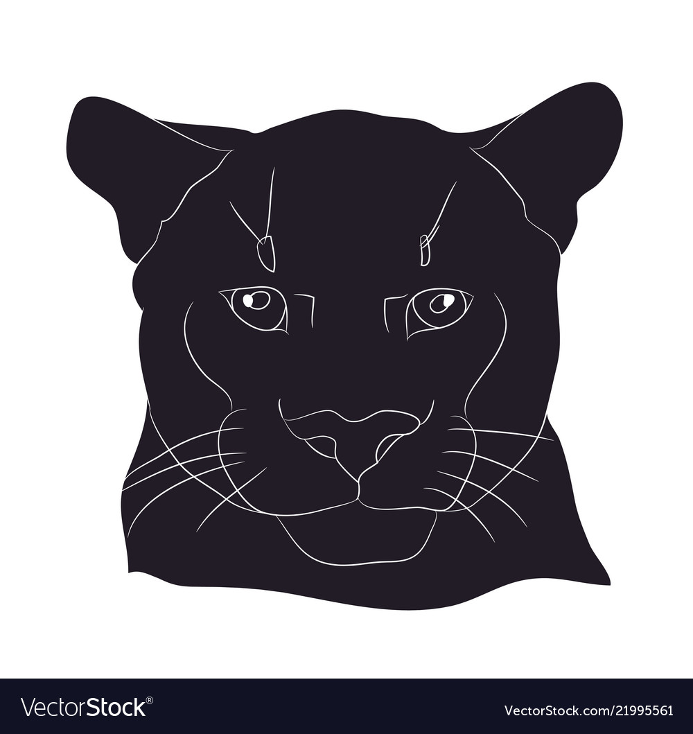 Portrait of a cougar silhouette