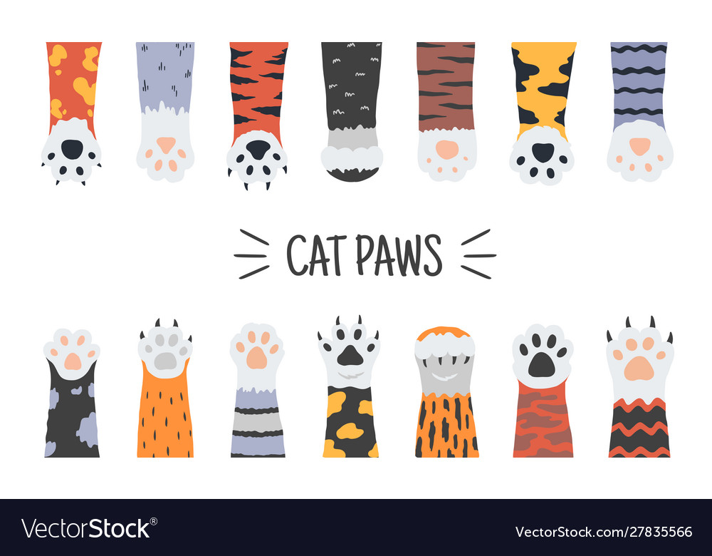 Cat paws hand drawn funny puppies and kittens
