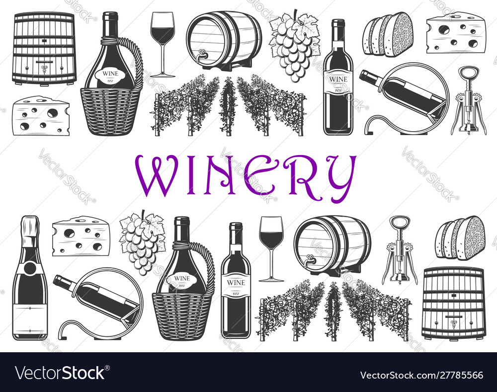 Wine production and winery items vineyard grape