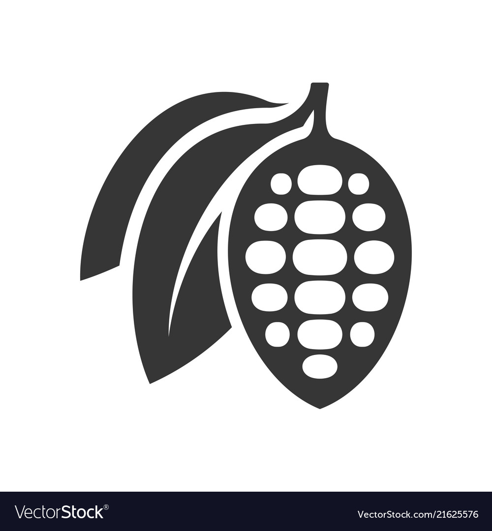 Chocolate cocoa beans icon on white background