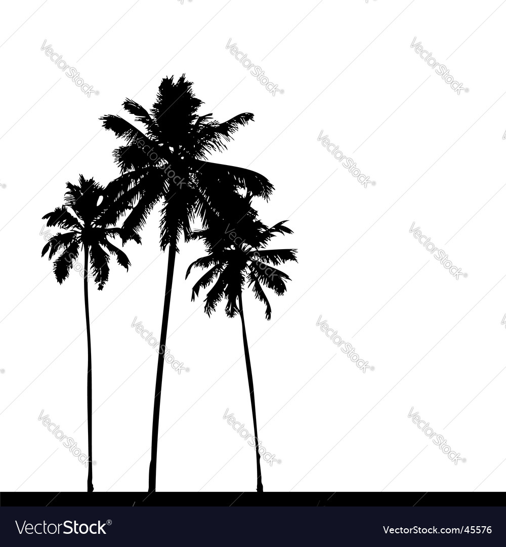 palm tree silhouette royalty free vector image rh vectorstock com palm tree leaf silhouette vector palm tree silhouette vector free