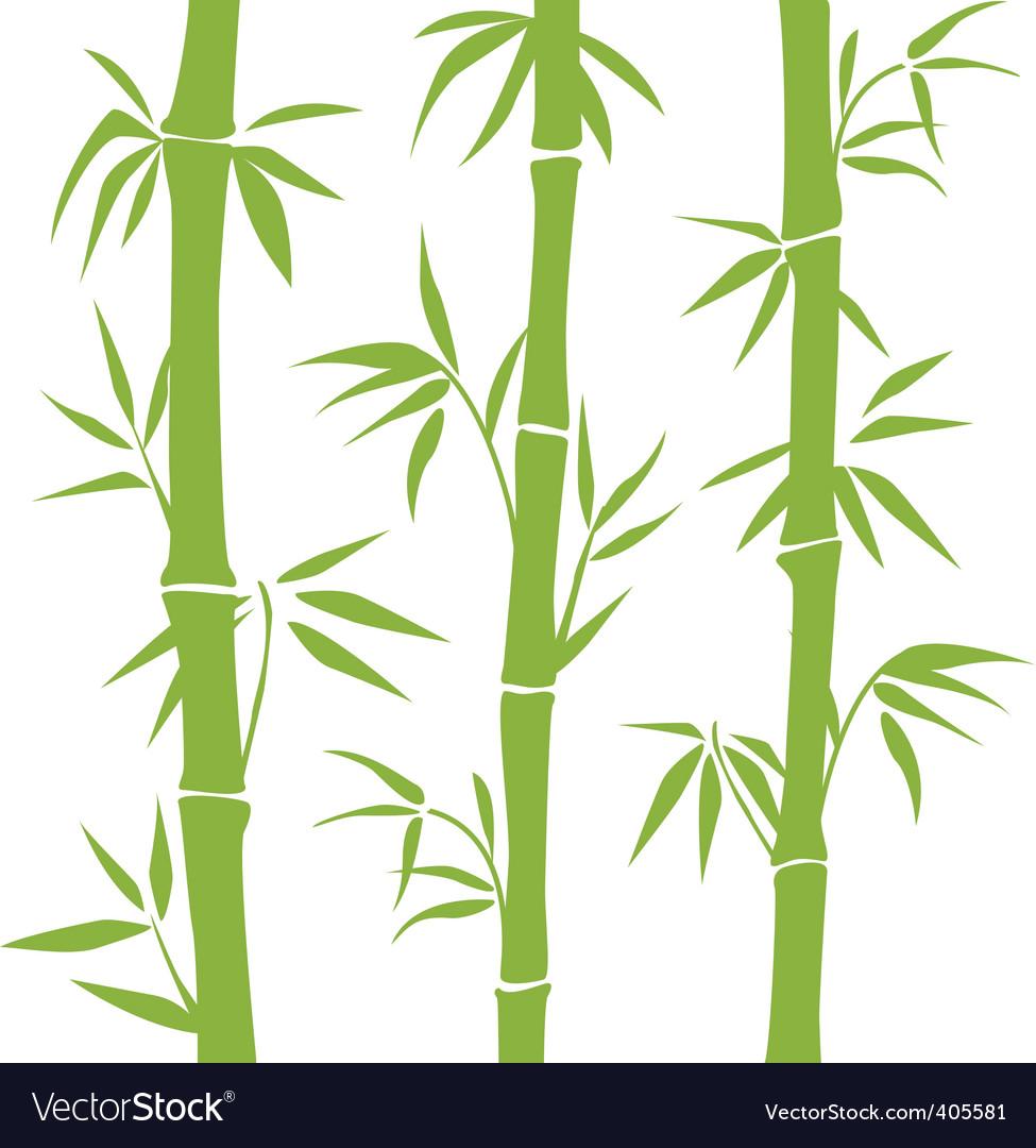 bamboo royalty free vector image vectorstock rh vectorstock com bamboo vector png bamboo vector illustration