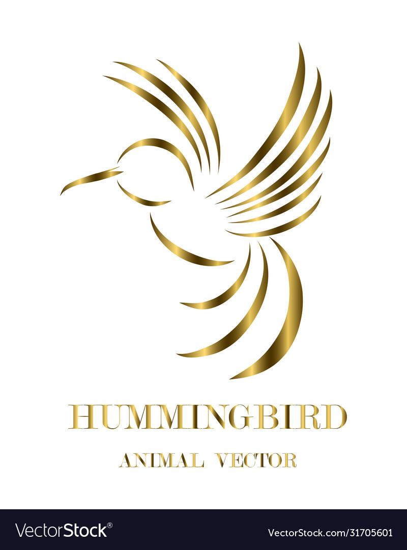 Flying hummingbird line art eps 10
