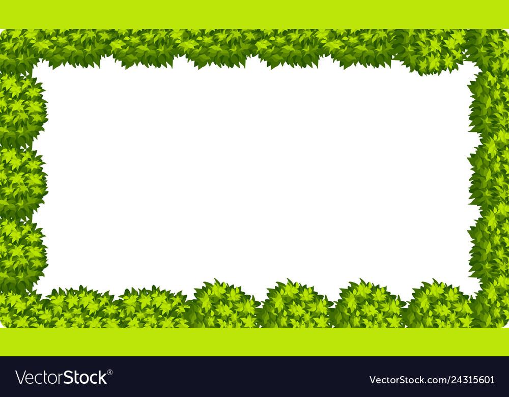 Natural leaf border scene
