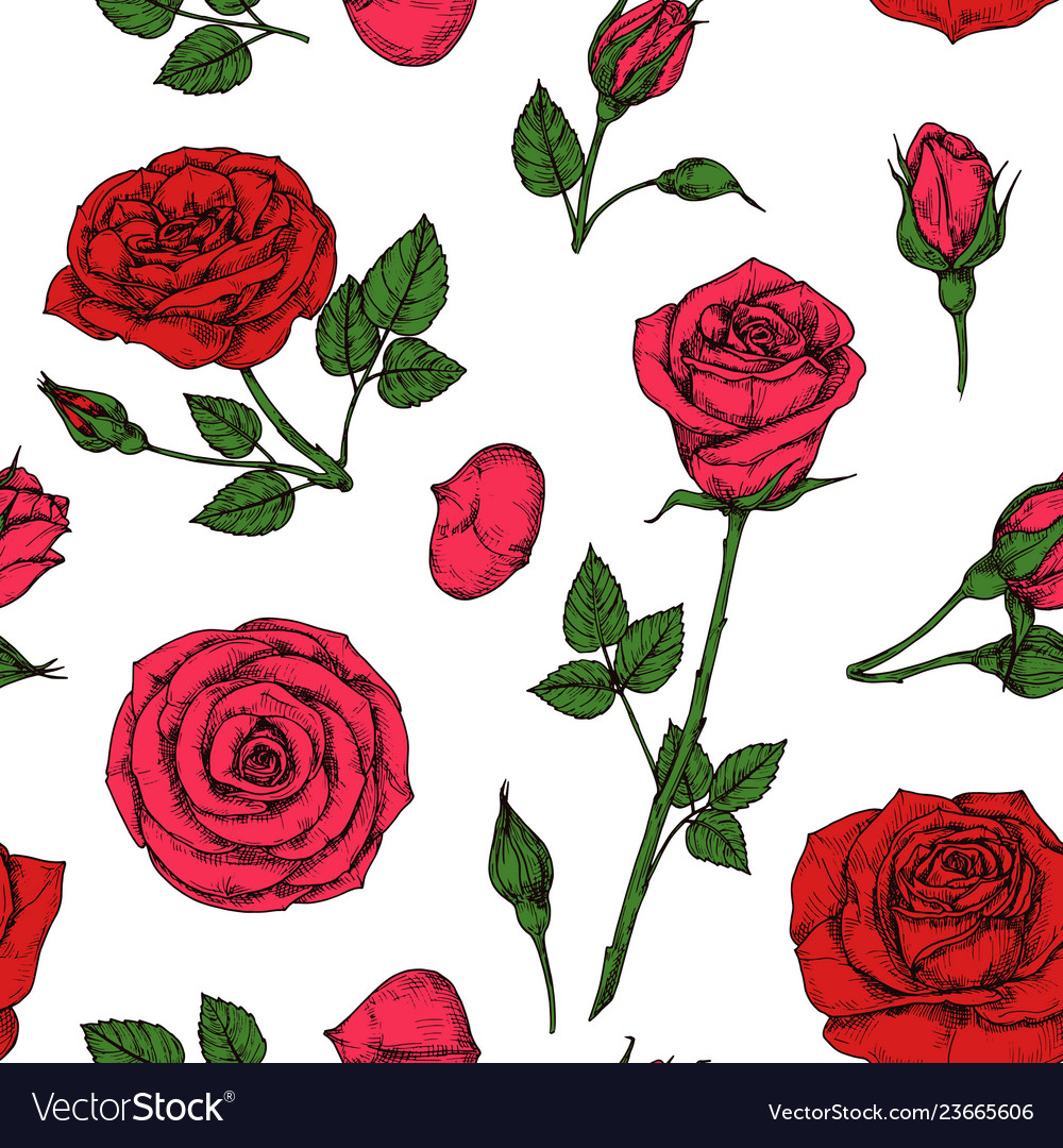 Roses pattern red blossom rose flowers bouquet
