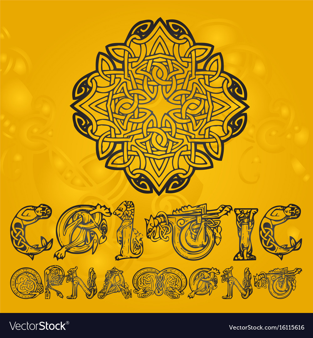 Celtic decorative ornament vector image