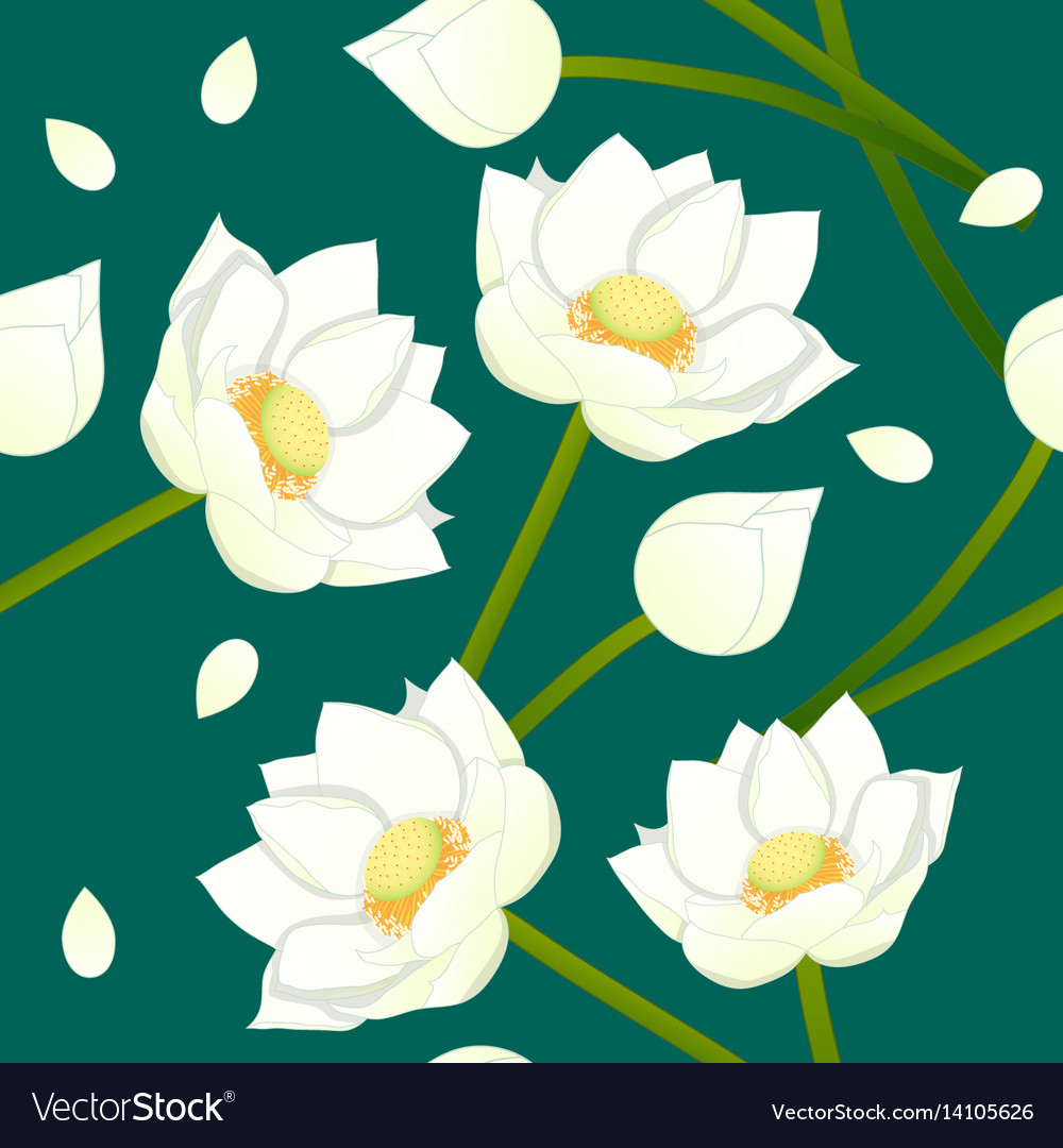 White indian lotus on indigo green teal