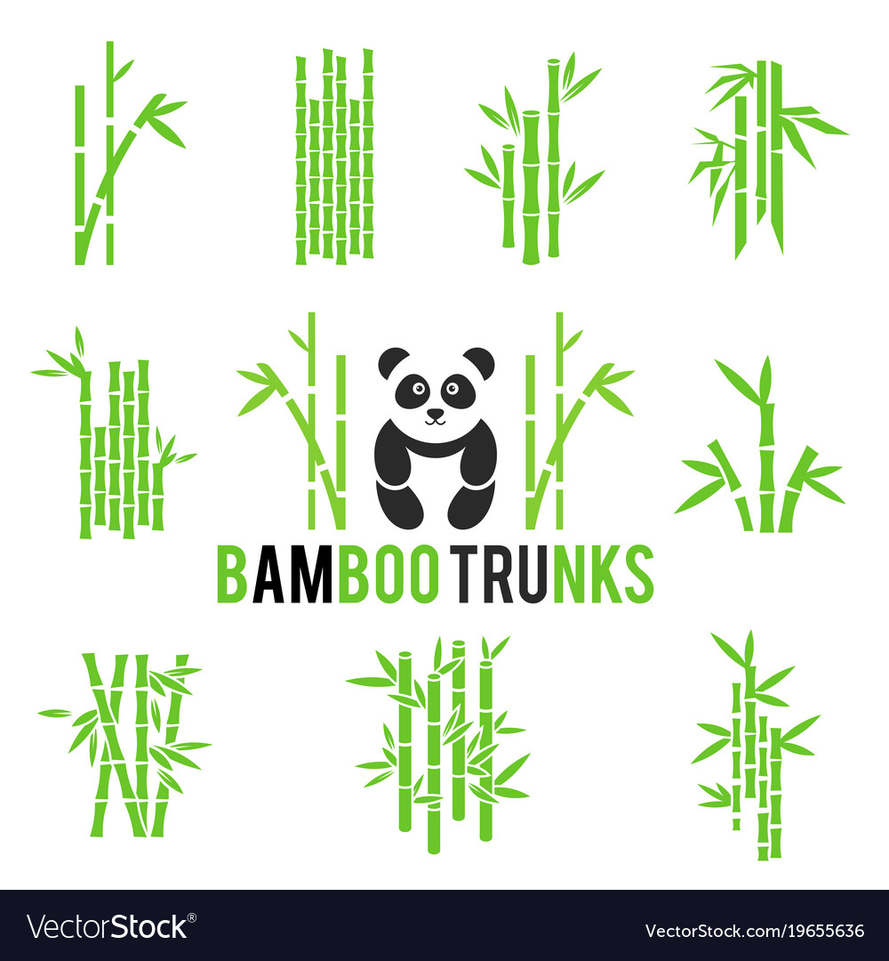 Bamboo icons set isolated on white