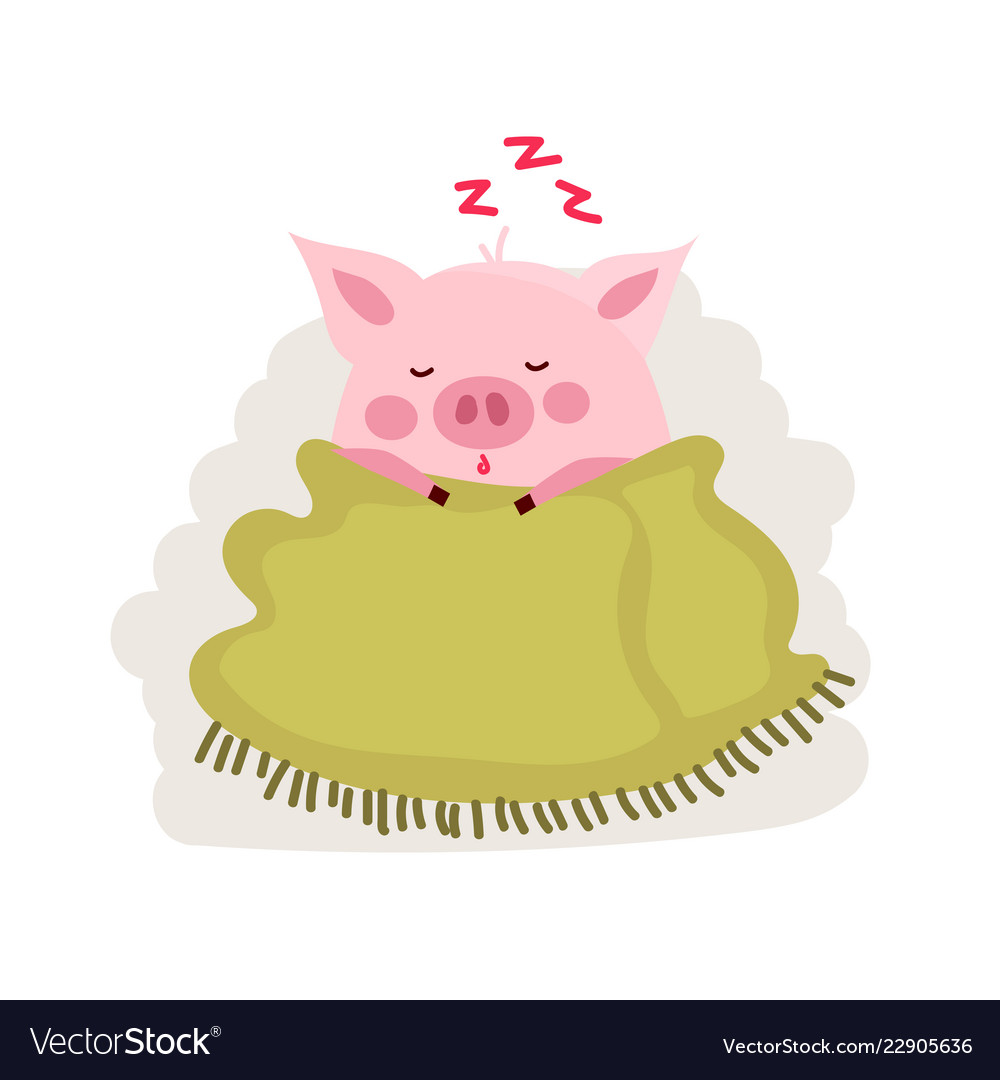 Cute cartoon pig covered by blanket isolated on
