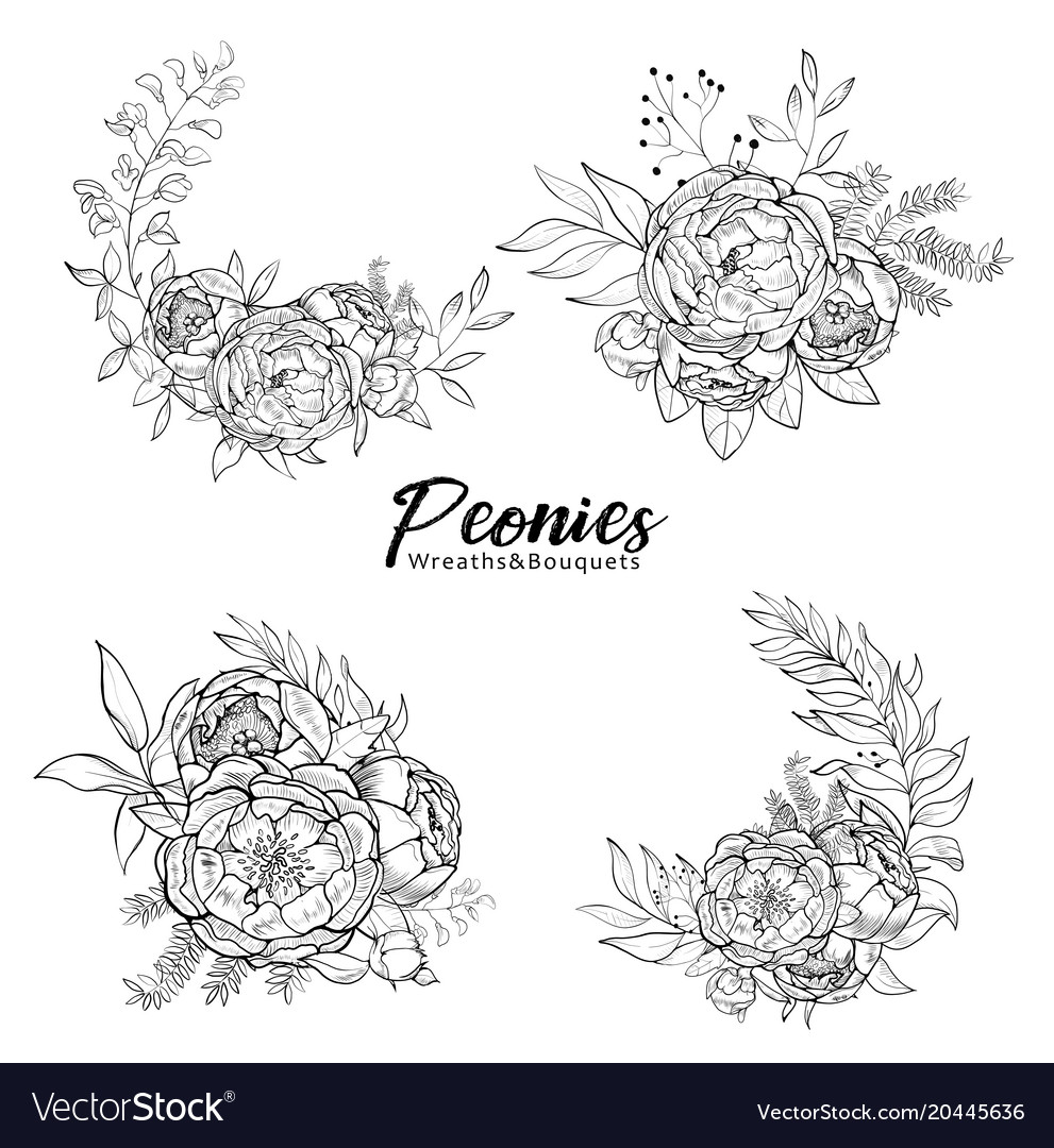 Set of bouquets peonies