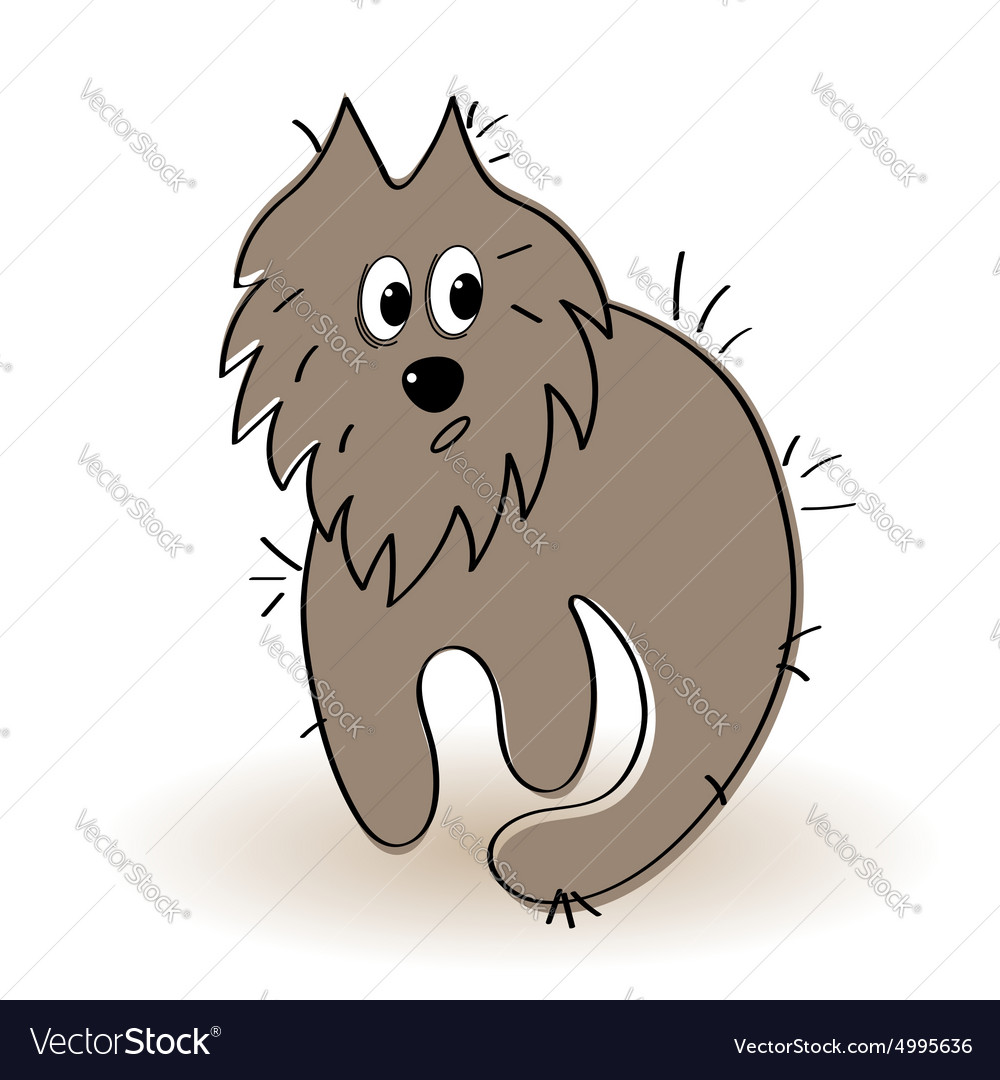 Shaggy and dirty animal vector image