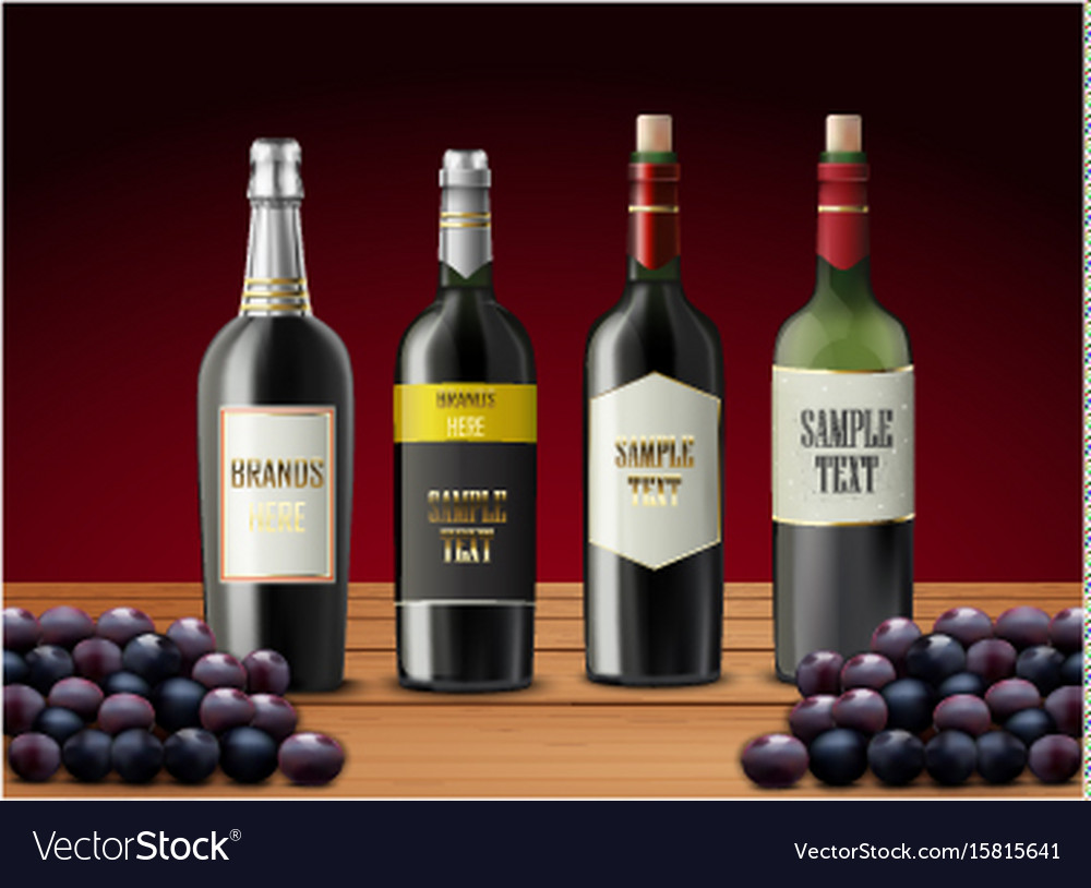 Set of wine bottles and grapes vector image