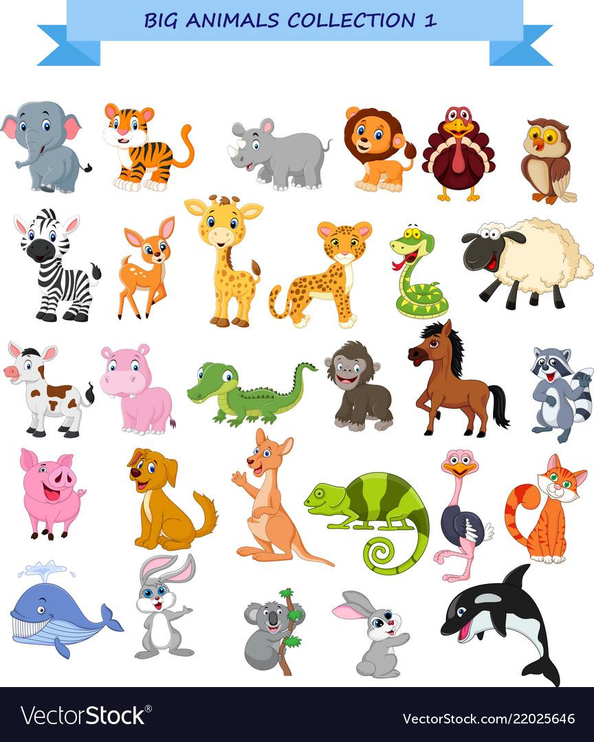 Big animals collection set