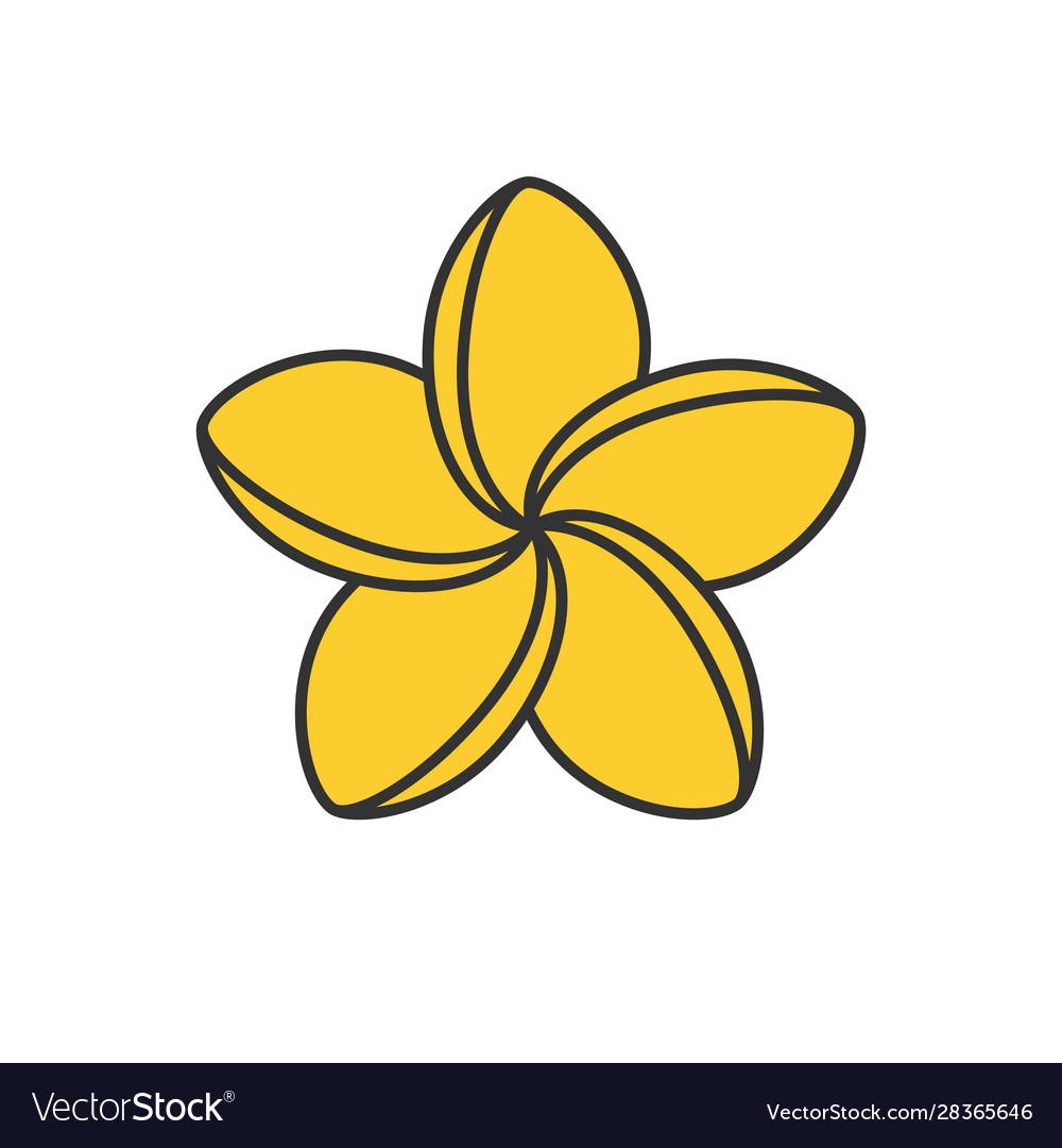 Spa salon plumeria flower color icon