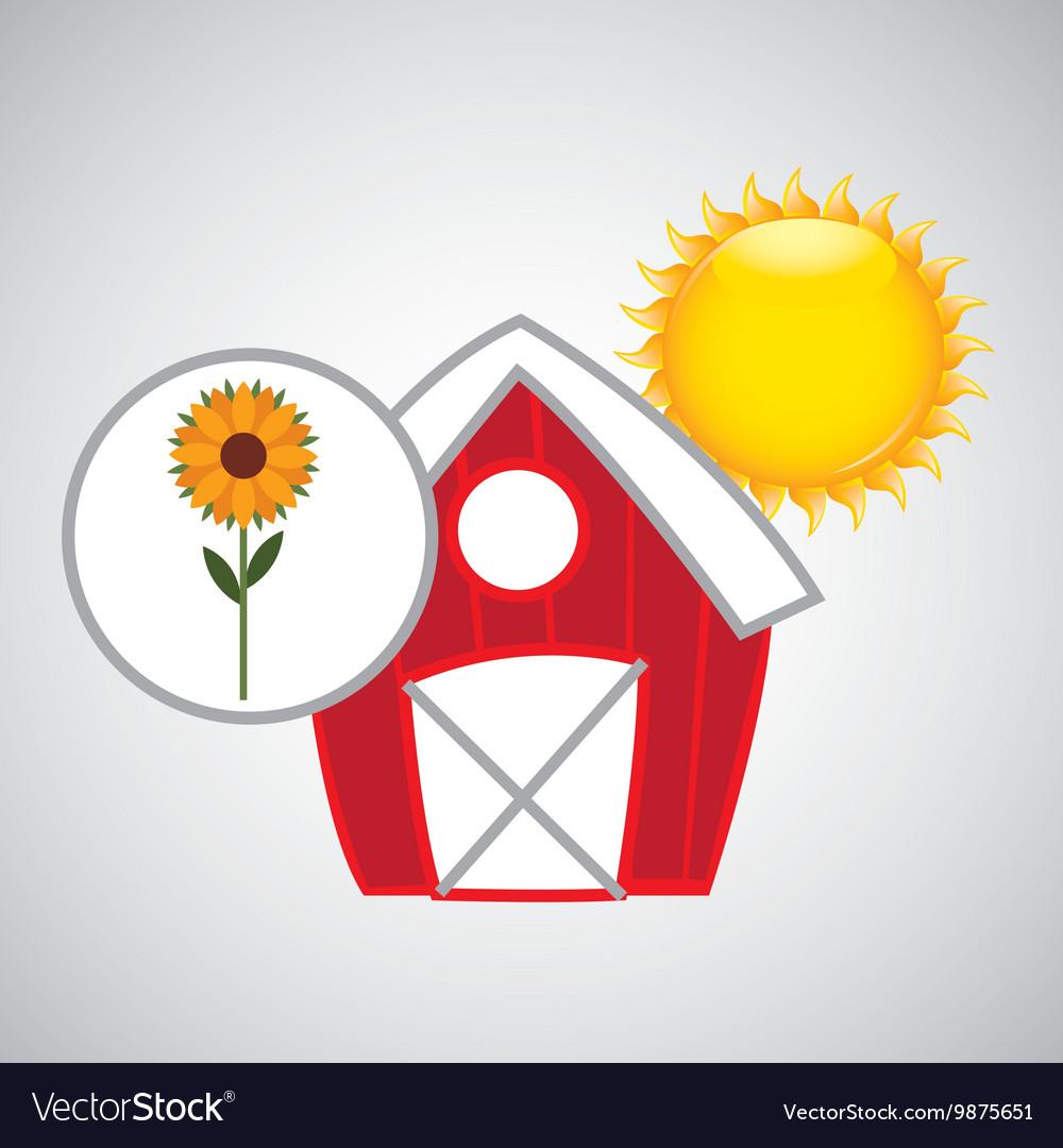 Farm countryside garden sunflower design