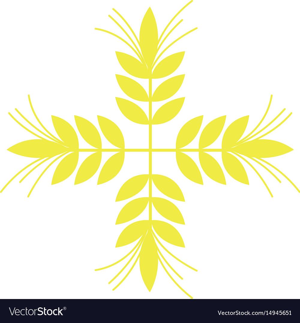 Healthy wheat organ plant nutricious vector image
