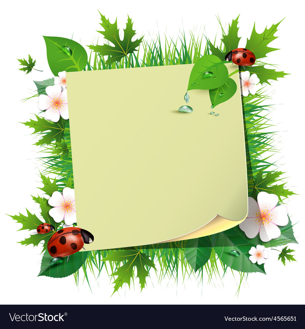 Spring background with grass and ladybug vector image