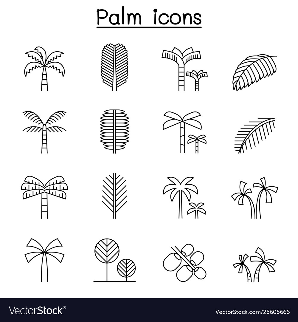 Palm tree coconut trees icon set in thin line