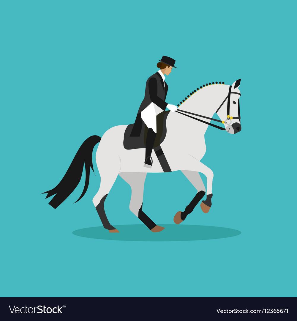 Race horse and lady jockey Horseback riding vector image