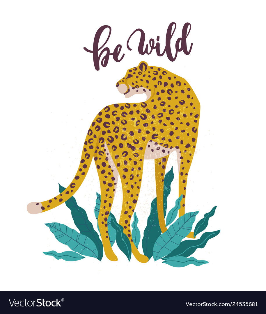 Be wild slogan leopard typography graphic print
