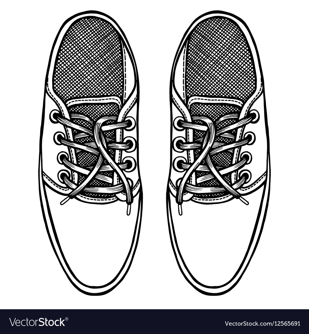 Skaters Shoes Top View Royalty Free