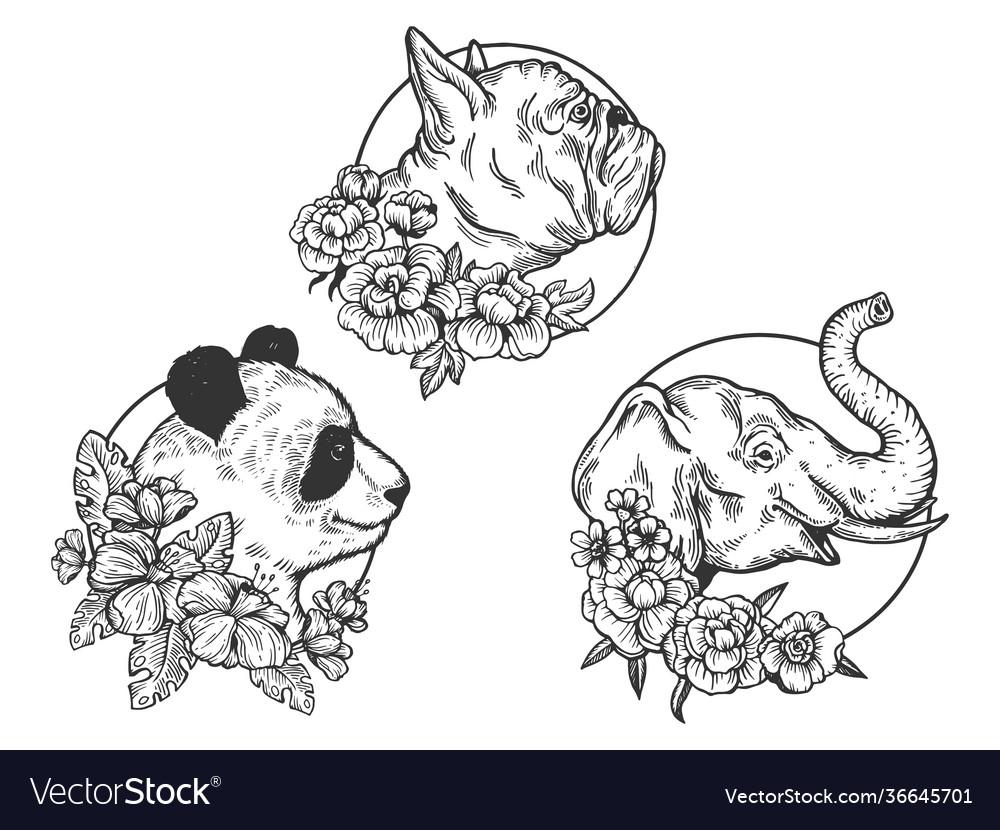 Panda elephant bulldog head animal sketch