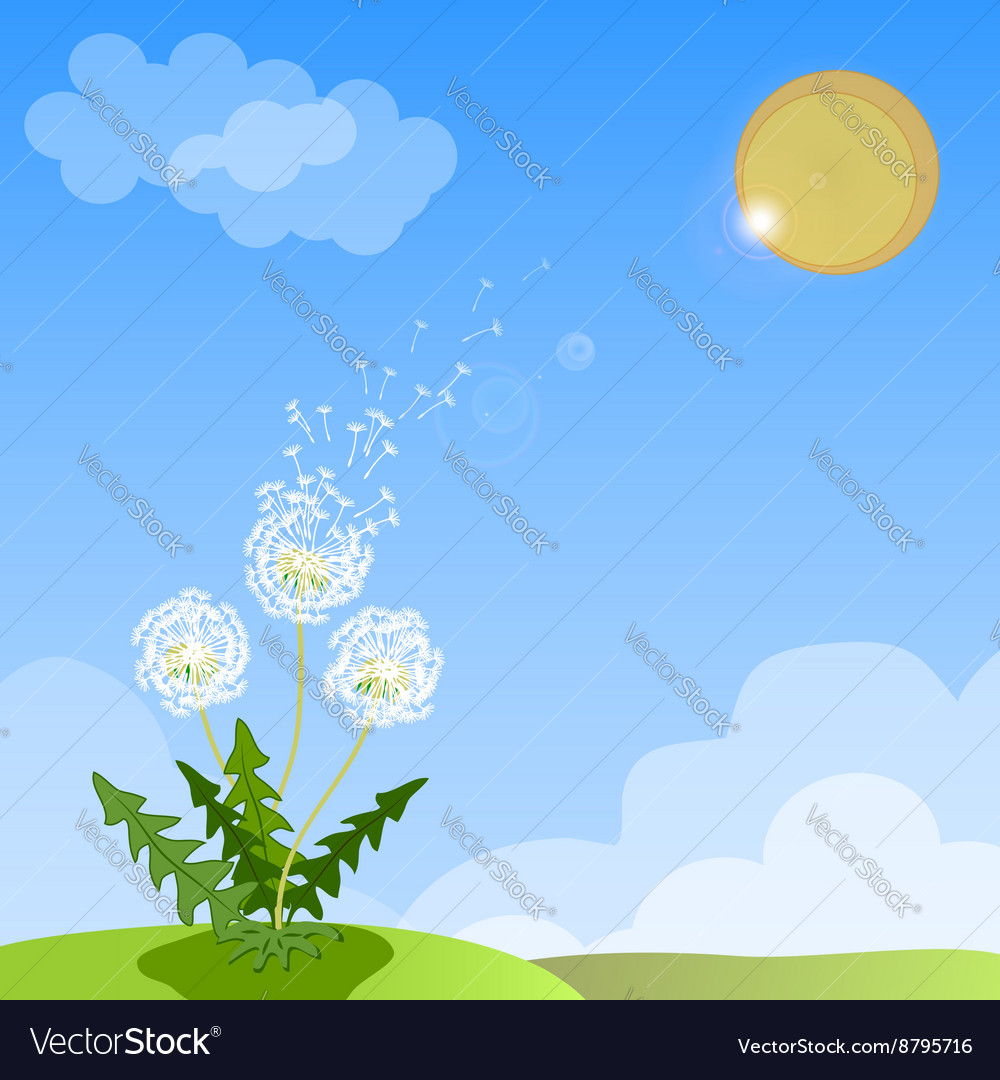dceeceef675fb Spring background with white dandelion Royalty Free Vector