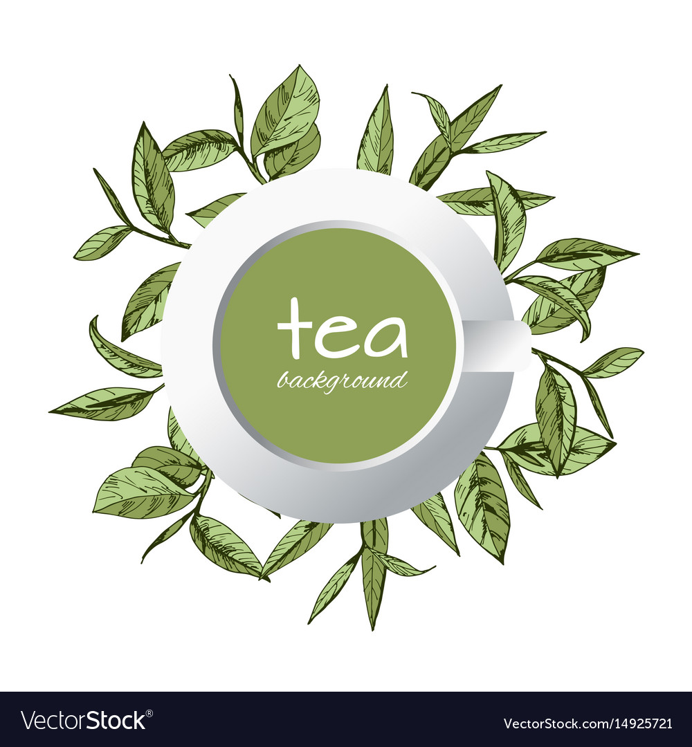 Green tea logo hand-drawn leaves tea