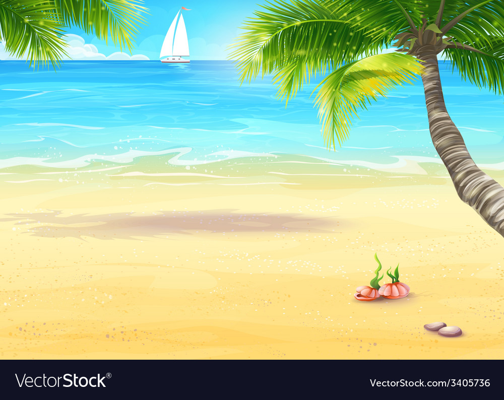 Sea shore with palm trees and seashells
