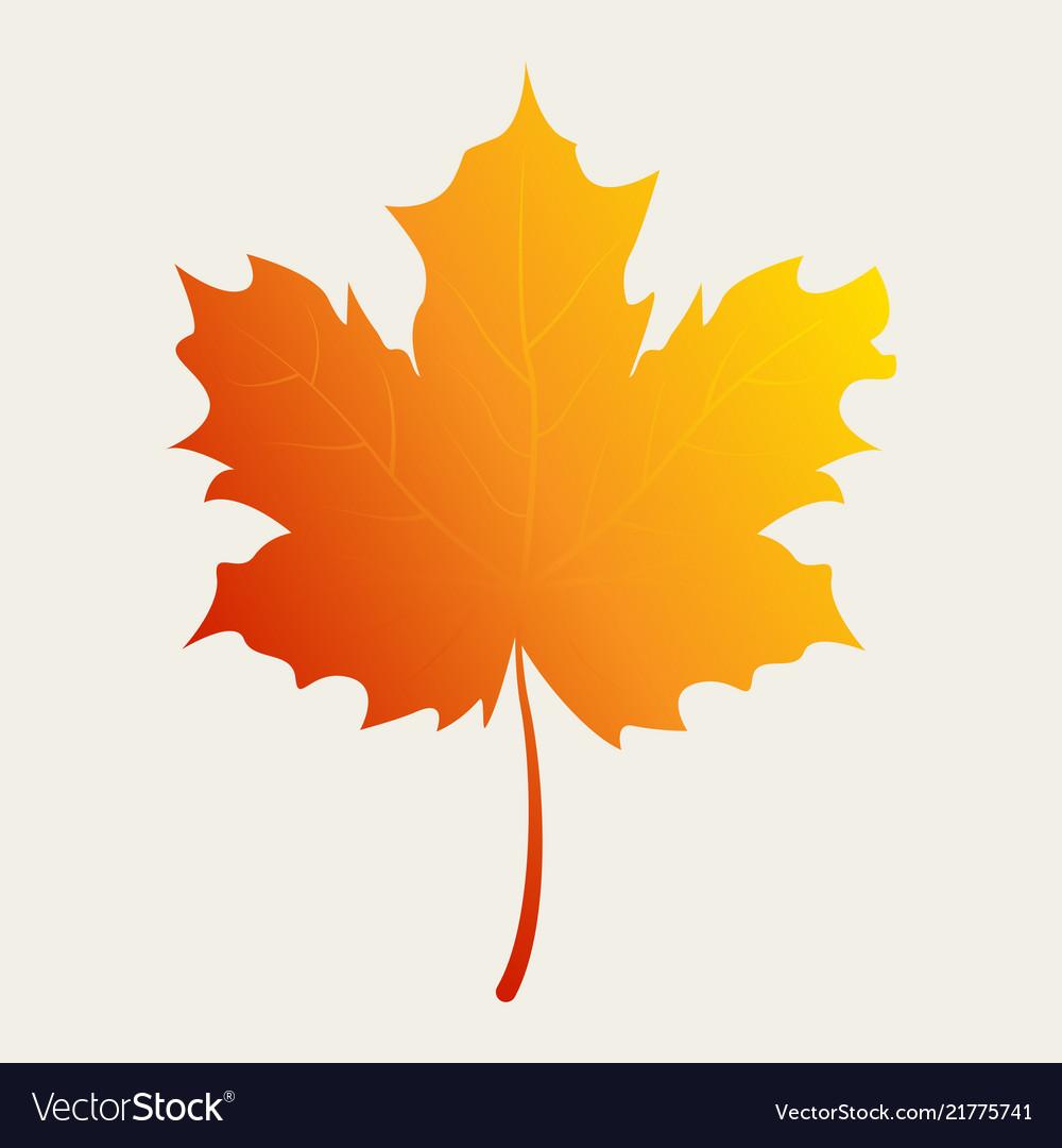 Autumn leaf in gradient color