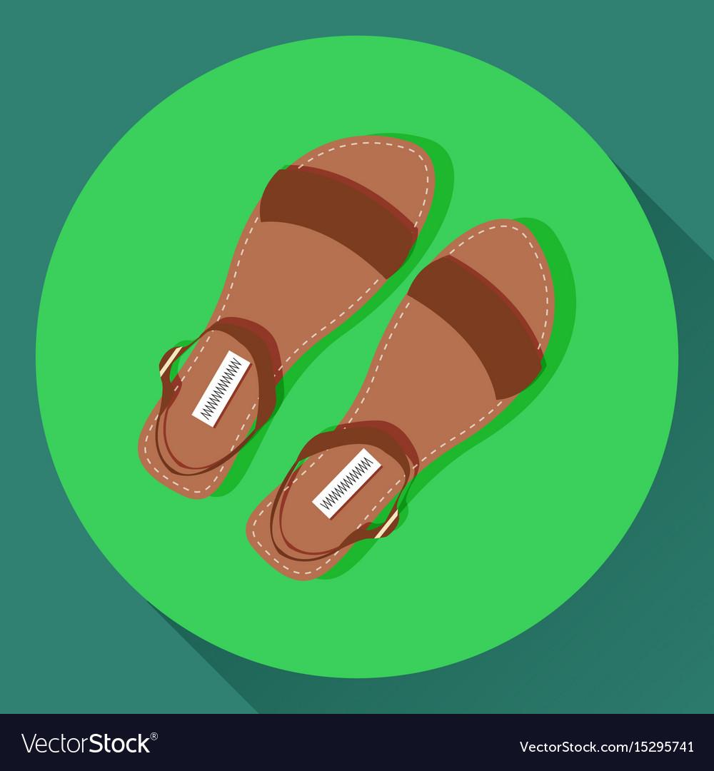Brown women summer sandals icon vector image