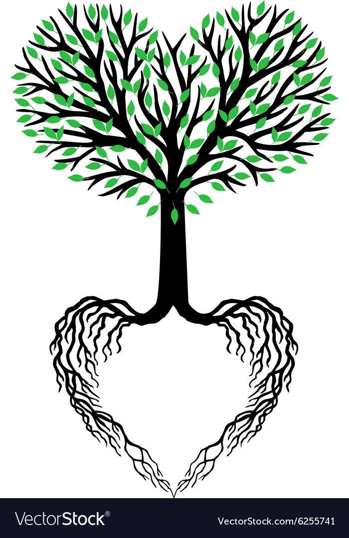 tree of life heart tree royalty free vector image