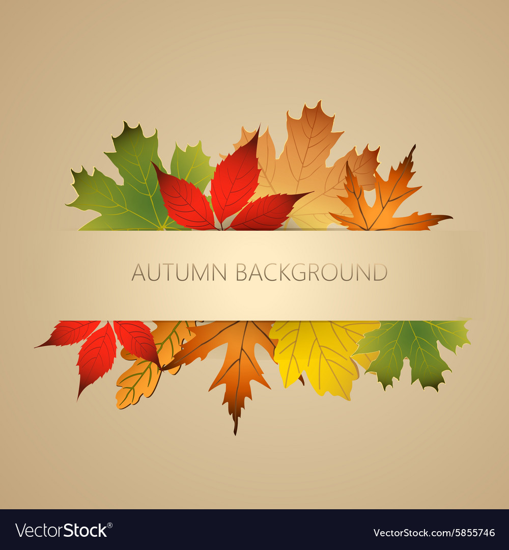 Aunumn background with leaves