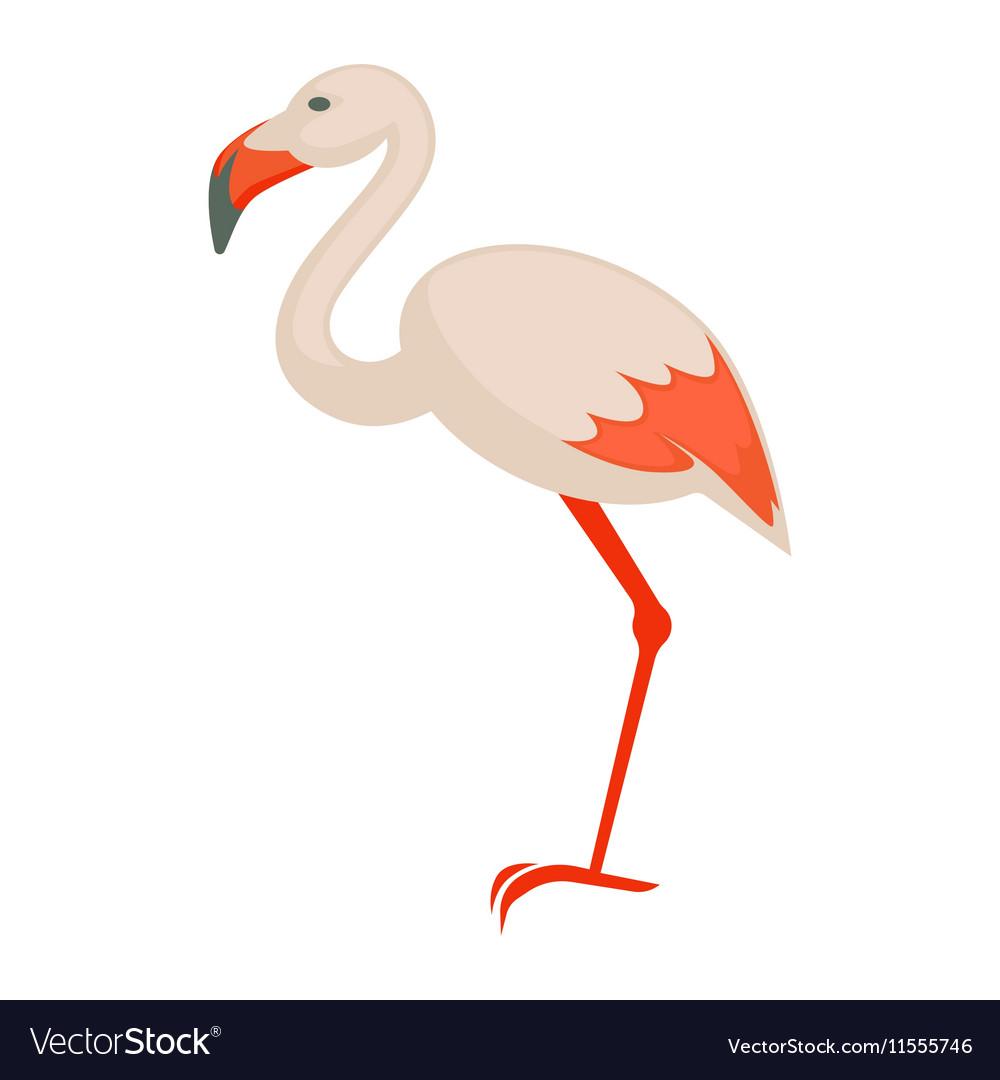 Pink flamingo Exotic bird isolated