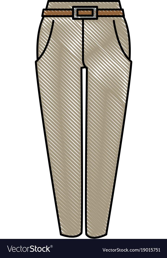 Elegant pants for women vector image