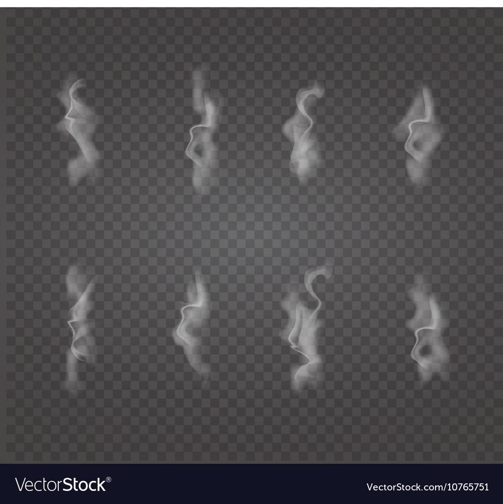 Set Of Transpa White Smoke Vector Image