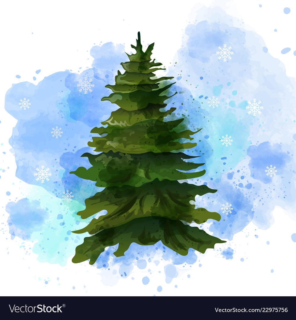 Fir Tree Watercolor Isolated On White Royalty Free Vector