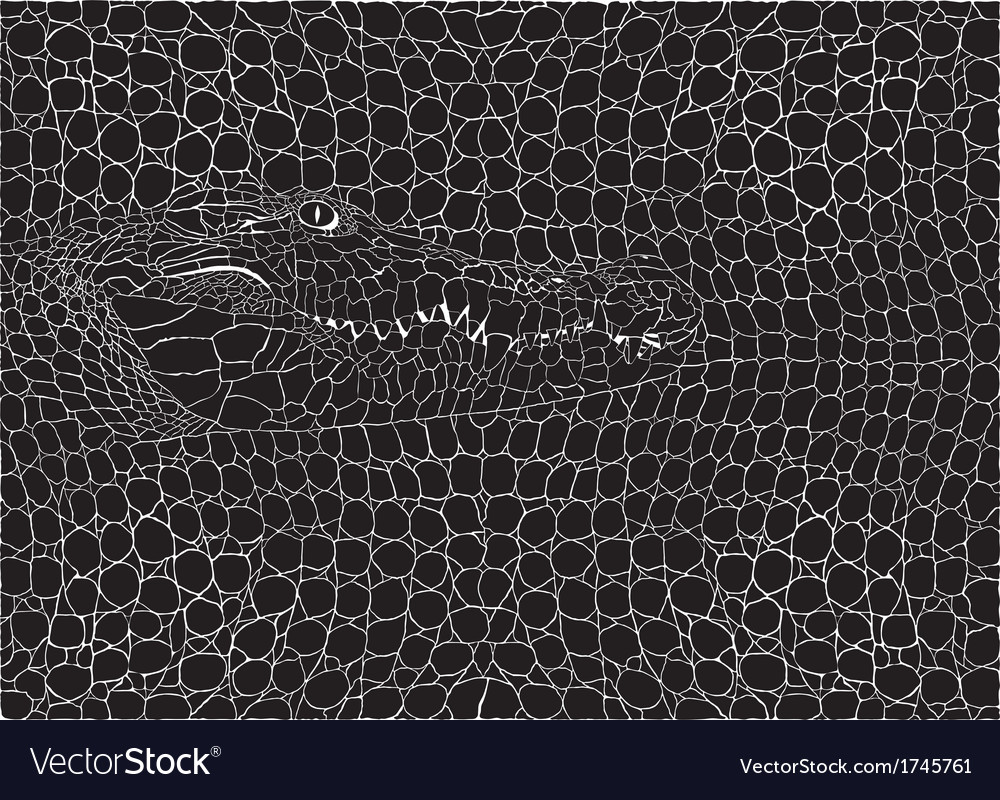 Crocodile pattern background