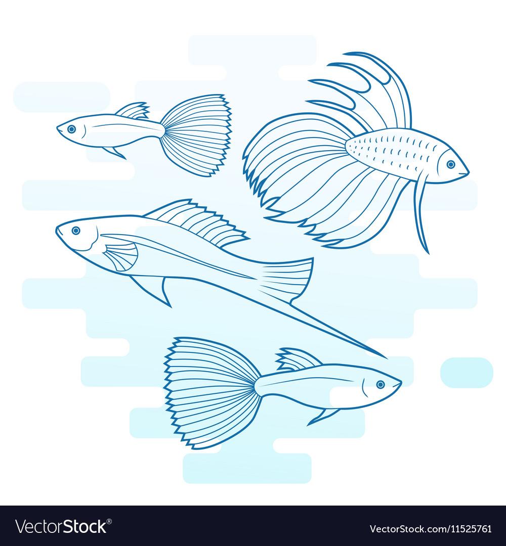 Set Of Different Aquarium Fish Royalty Free Vector Image