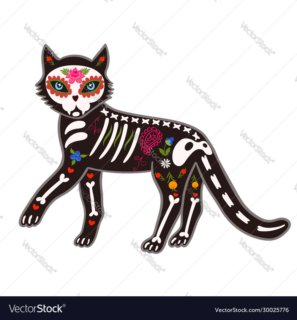 Death day cat sugar skeleton isolate on a white