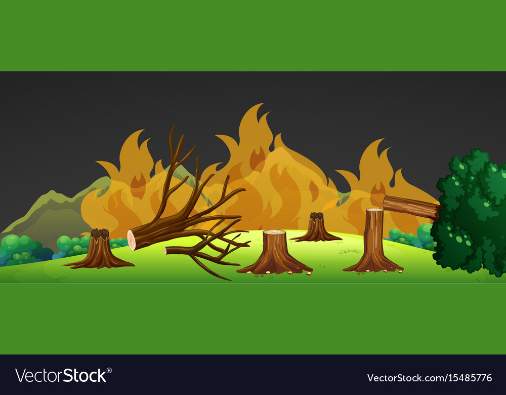 Wild fire in forest at night