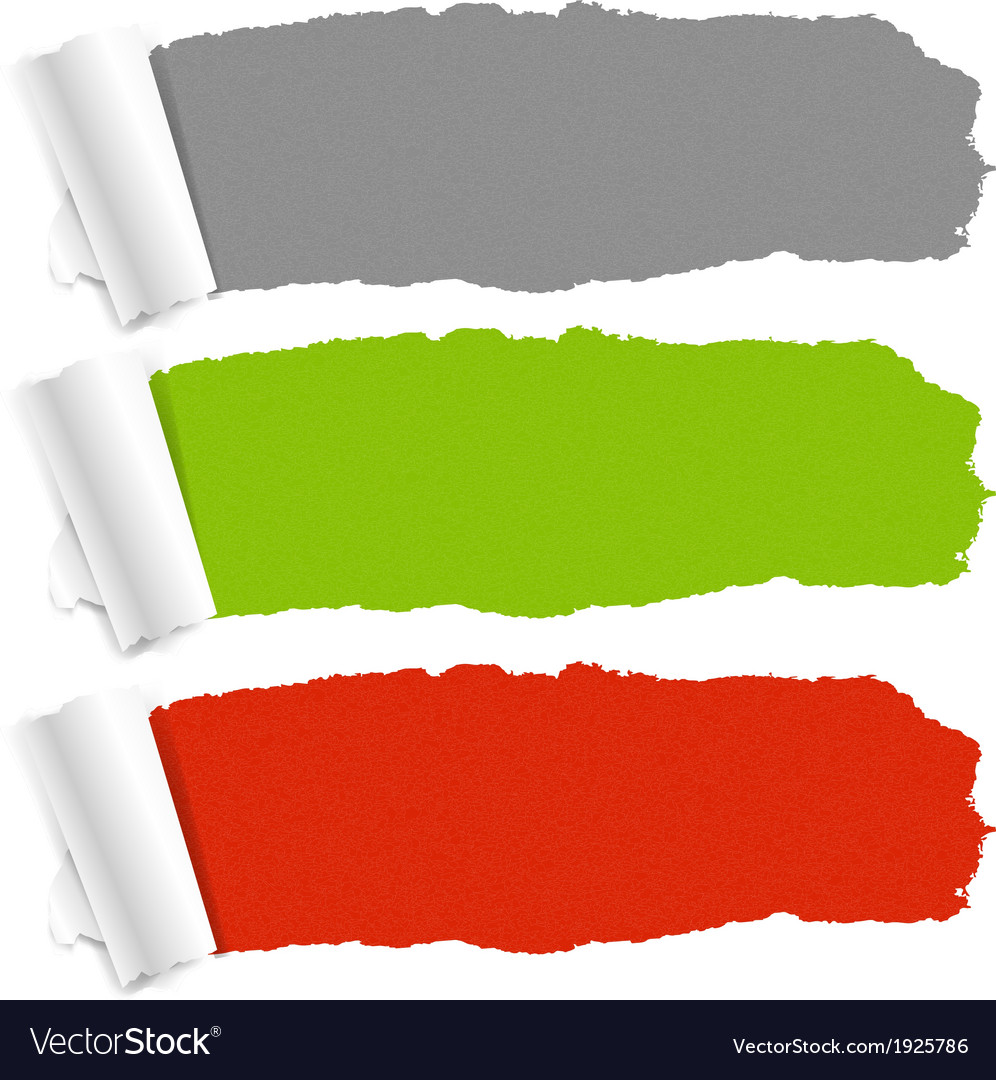 color torn paper set royalty free vector image