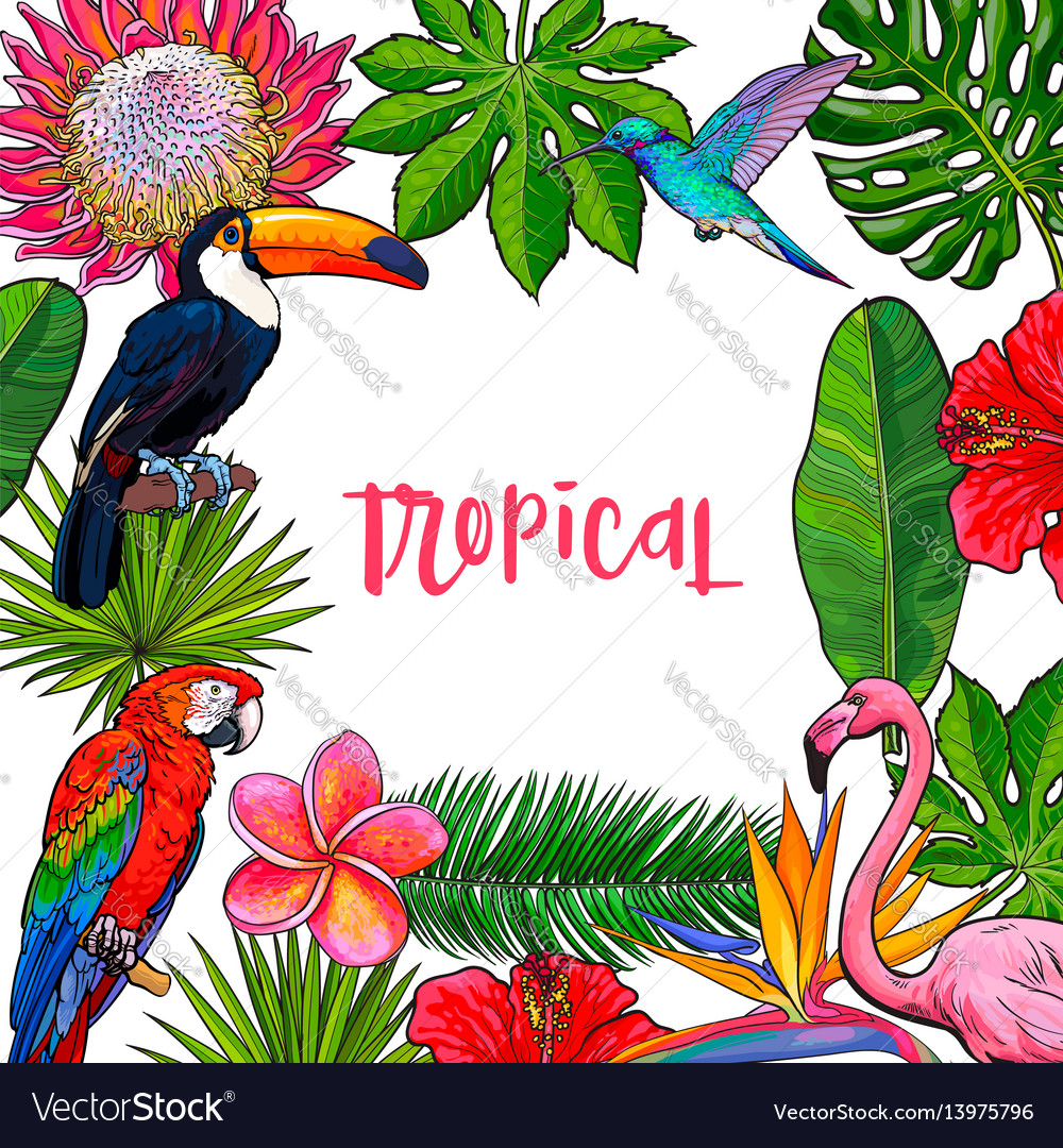 Banner with tropical palm leaves birds flowers