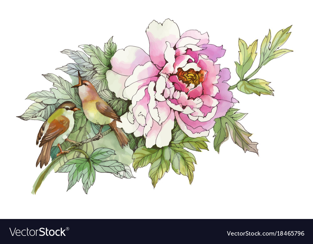 Hand Drawn Pink Flower With Birds Isolated On Vector Image
