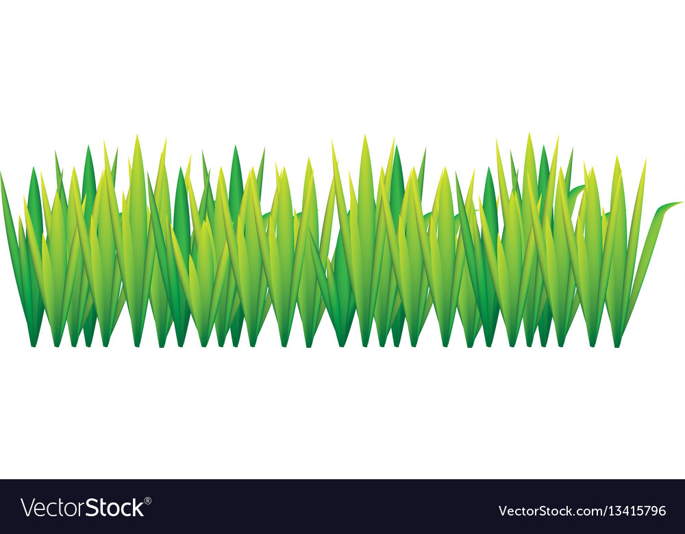 Lime green grass with leaves icon