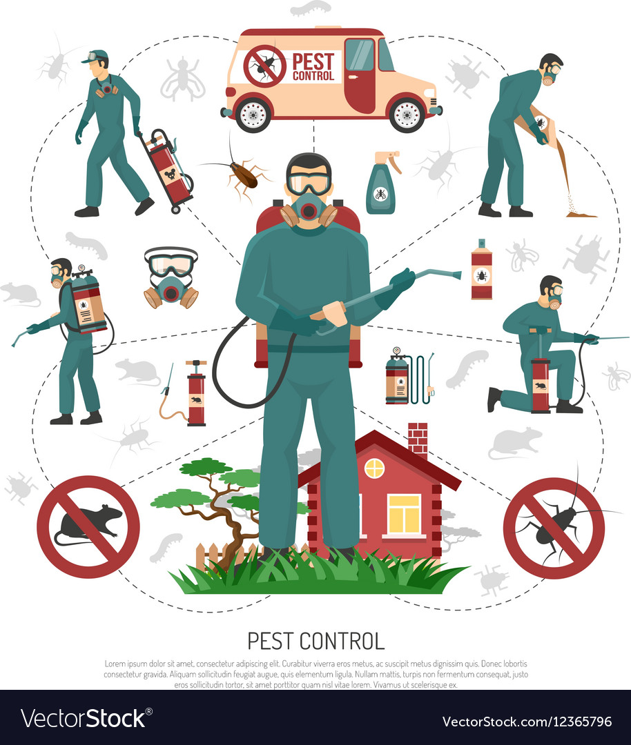pest-control-services-flat-infographic-p