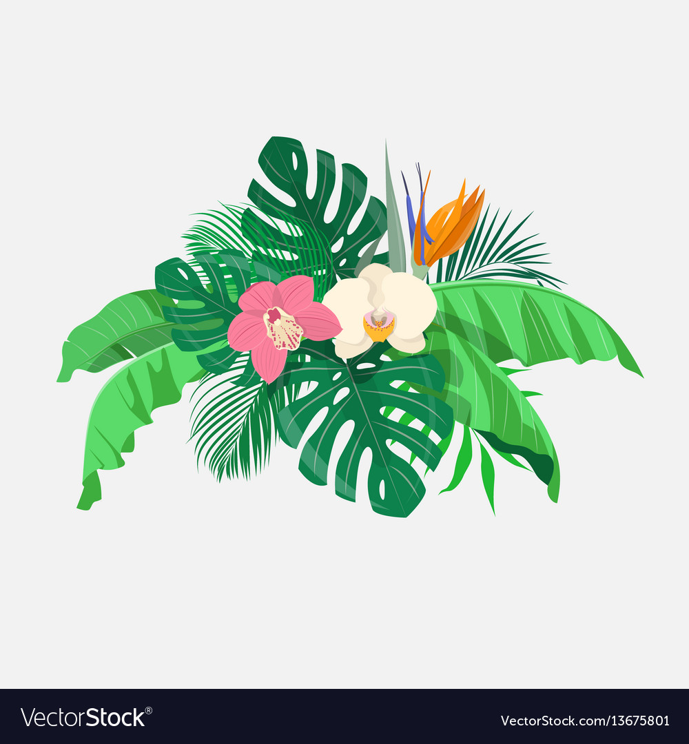 Composition of tropical leaves and exotic flowers